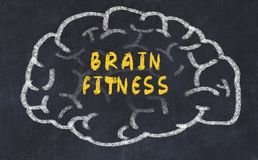 Chalk drawing of human brain with inscription brain fitness.  stock photos