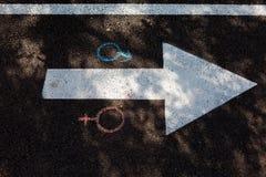 Chalk drawings on the asphalt. Gender symbols on the pavement stock photos