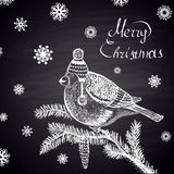 Chalk drawn illustration with bullfinch in a hat on fur-tree branch, Merry Christmas text and snowflakes. Stock Photo