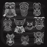 10 chalk drawn owls on blackboard. Fully editable eps 10 file with transparency effects, hand written text and frames on separate level Royalty Free Stock Photo