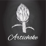 Chalk drawn sketch artichoke flower vector Black and white kitchen art, Kitchen decor Royalty Free Stock Photography