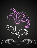 Chalk flower on blackboard Stock Images