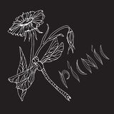 Chalk hand drawing. Element for a picnic-style Doodle on a black Board background. Flower and dragonfly, hand lettering vector illustration