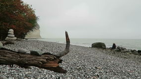 Chalk rock cliff of Rugen island in autumn time stock video