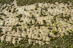 Chalk rocks on Rottingdean Beach, England Stock Photo