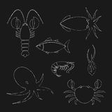 Chalk seafood icons set Royalty Free Stock Photo