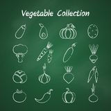 Chalk style outline vegetable symbol set. Grunge outline vegetable icon set isolated on green chalkboard. Vector illustration with chalk style contour of onion Royalty Free Stock Photo