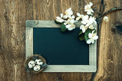 Chalkboard with apple tree blossom, easter eggs Royalty Free Stock Photography