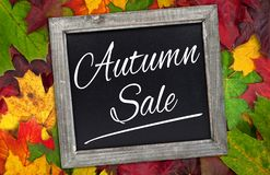 Chalkboard with autumn leaves and autumn sale stock images
