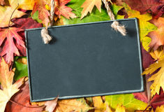 Chalkboard  on autumnal leaves. Chalkboard and autumn maple leaves on background Royalty Free Stock Images