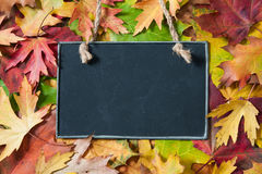 Chalkboard  on autumnal leaves Stock Image