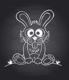 Chalkboard background with funny rabbit. Stock Photos