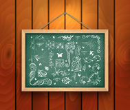 Chalkboard with design elements Stock Image