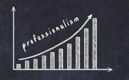 Chalkboard drawing of increasing business graph with up arrow and inscription professionalism.  vector illustration