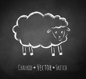 Chalkboard drawing of sheep Royalty Free Stock Images