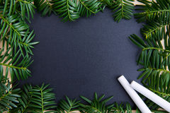Chalkboard. Empty chalkboard surrounded of green twigs Royalty Free Stock Photography