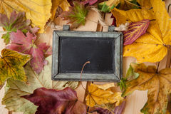 Chalkboard with fallen leaves Royalty Free Stock Photo