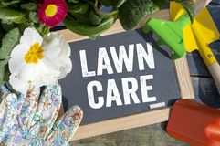 Chalkboard with garden equipment and lawn care. Chalkboard with garden equipment, plants and lawn care stock photo