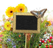 Chalkboard in the garden Royalty Free Stock Images