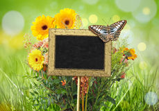 Chalkboard in the garden Royalty Free Stock Photography