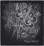 Chalkboard hand drawn vegetables background. Royalty Free Stock Image