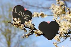 Chalkboard kierowa miłość, kwiat Obrazy Stock
