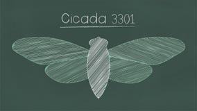 Cicada 3301 organization royalty free illustration