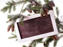 Chalkboard on the pine Stock Photos