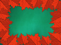Chalkboard with red maple leaves Royalty Free Stock Image