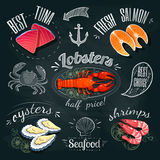 Chalkboard seafood ADs - tuna, salmon, lobster, oysters and shrimps. Vector illustration, eps 10. Stock Image