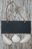 Chalkboard with seashells on the old wood Stock Image