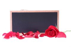 Chalkboard sign blank text message with red rose Royalty Free Stock Images