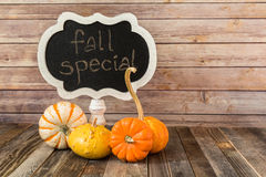 Chalkboard sign and decorative fall gourds Stock Images