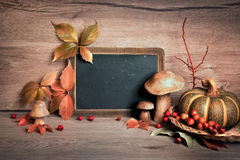Chalkboard with space for your greeting text with Autumn decorat Stock Images