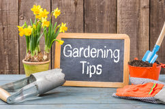 Chalkboard with the text Gardening Tips Stock Photo