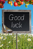 Chalkboard with text Good luck Royalty Free Stock Image