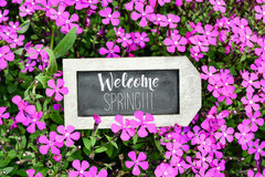 Chalkboard with the text welcome spring Stock Photo