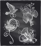 Chalkboard wedding floral drawn graphic set. Stock Images