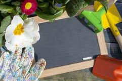 Chalkboard z roślinami i ogrodowymi narzędziami na błękitnym drewnie fotografia stock