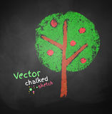 Chalked drawing of apple tree Royalty Free Stock Photography
