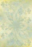 chalky blommalotusblomma för bakgrund Arkivfoto
