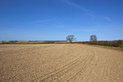 Chalky cultivated field Royalty Free Stock Photo