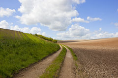 Chalky soil and farm track Stock Image