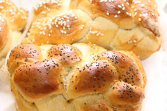 Challah loaf Stock Photography