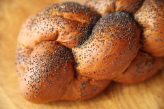 Challah with poppy seeds Royalty Free Stock Images