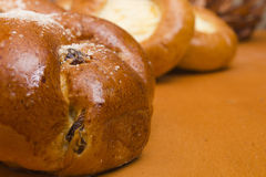 Challah with raisins Royalty Free Stock Image