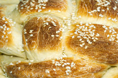 Challah Royalty Free Stock Photo
