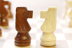 Challenge. Two knights challenge head to head.  High-key effect, shallow DOF Royalty Free Stock Photo