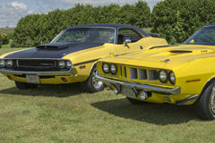 Challenger and cuda stock images