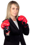 Challenging business woman with boxing gloves Stock Photos